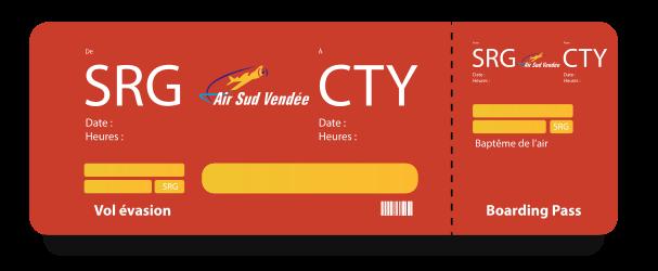 Avion Air Sud vendee